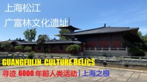 Guangfulin Culture Relics & Sheshan National Forest Park Day trip